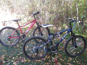 Two CCM Bikes For the price of one