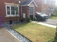 NEED GONE ASAP! Beautiful 3 storey house £675 DSS accepted