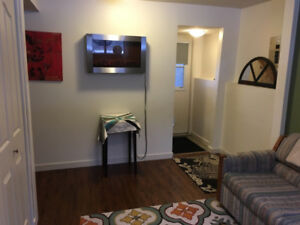 Small basement bachelor suite up for grabs October 1st!