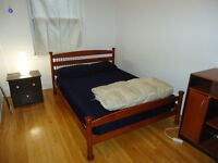 Nice Room in Cote-St-Luc for 500$