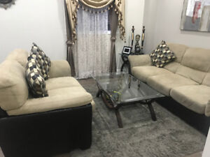 Living Room Couch and Sofa set