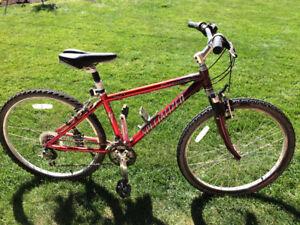 Specialized Trail Bike