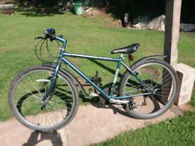 "Ridge back mountain bike 17"" frame"