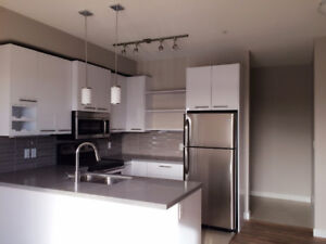 Great 2 bedroom condo 10418 81 Ave close to UA and Whyte Ave