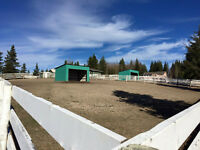Full Service Horse Boarding West of Prince George