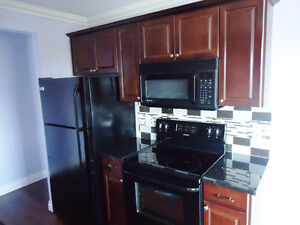 GORGEOUS Two Bedroom Condo CENTRAL to everything (Whyte Avenue)