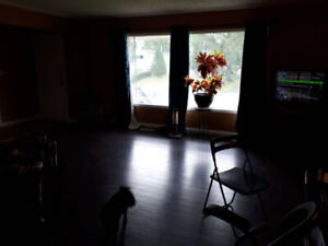 Room for rent in a great location, close to river valley!