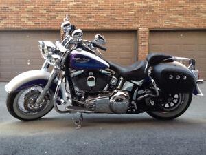 Harley-Davidson Softail Deluxe FLSTN 2010