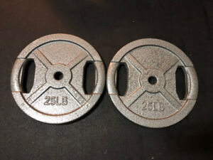 95 lbs of 1 inch free weights (Excellent Condition)