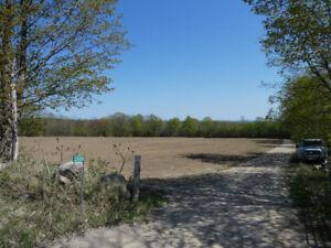 44 Acres Vacant Land