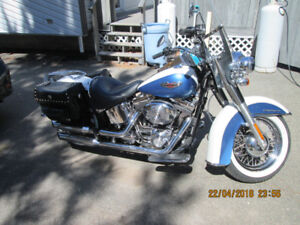 COOL 2005 HARLEY SOFTAIL DELUXE