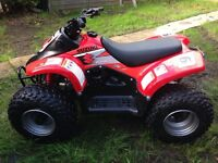 Suzuki lta 50 lt 50 50cc kids quad
