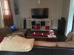 Two Bedrooms Available in Three Bedroom House Close To Marina