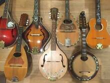 MANDOLINS - CUSTOM HAND MADE- ALL SOLID WOODS *LESSONS TOO!* Blackburn Whitehorse Area Preview