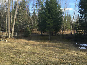 Cleared Lot for sale!! Quebec Residents only!! Gatineau Ottawa / Gatineau Area image 3