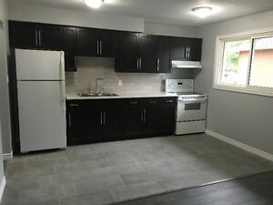 Newly Renovated 2 Bedroom + Den Apartment on Regina St. Waterloo