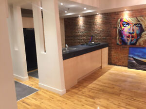 Beautiful 1 bedroom 3 1/2 Apartment -- Old Port Montreal