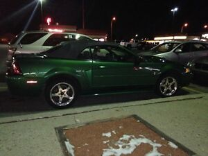 1999 35th Anniversary Edition Ford Mustang Convertible