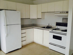 Bachelor in Gatineau for rent