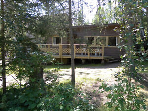 roomy cabin for rent at emma lake