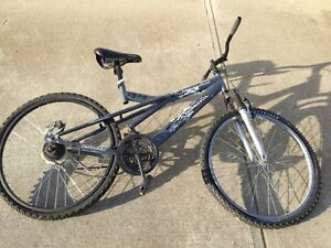 Mountain bike for only $40. Needs a little work