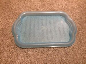 Blue plastic tray Kingston Kingston Area image 1