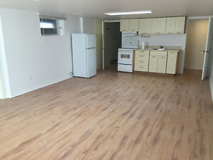 Hintonburg/Civic Hospital Large bright basement apartment