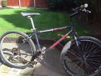 adults muddyfox mountain bike