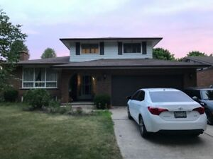 Lakeview House Basement Apartment For Rent