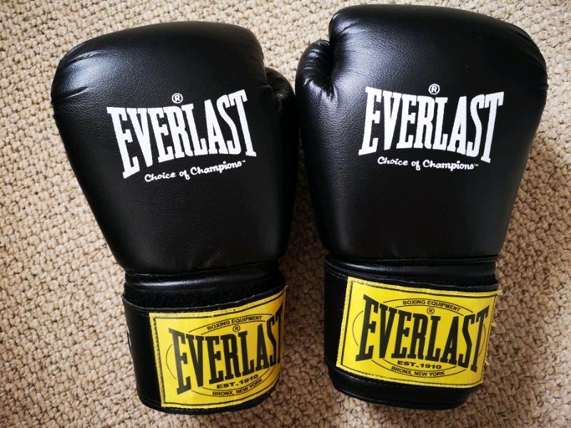 Everlast Boxing Gloves | in Sunderland, Tyne and Wear | Gumtree