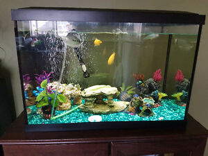 Fish tank with the fisheries