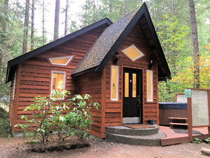 Mt. Baker Lodging - Cabin #16 - HOT TUB, FIREPLACE, BBQ, SLPS-4!