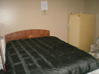 """14 """" x 14""""  Room for rent In Bancroft"""