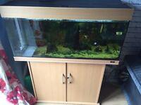 Jewel tropical fish tank 200 litre
