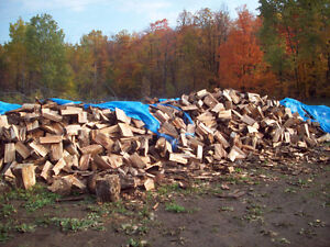 firewood forsale 100% hard maple