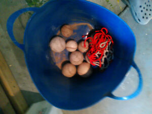 Bucket of hard balls and Softball
