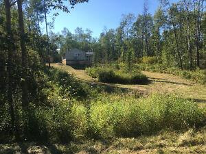 Cozy Cabin on Lower Mann Lake lot near Ashmont