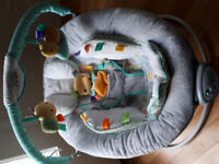 Taggies Baby Bouncer