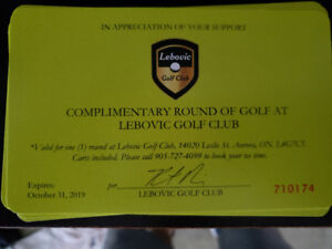 Foursome passes to beautiful Lebovic Golf Course in Aurora.