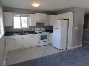 Bright, spacious 1 bedroom upper suite in a newer home(2011)