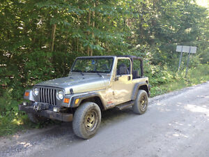 2001 Jeep TJ Winch 3500lb Coupé (2 portes)