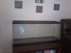 60 gallon fish tank with and working heater/pump 300 cash only