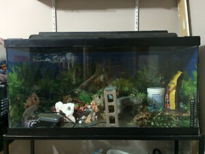 Fish Aquarium (large, with metal stand and more) 100.00 OBO