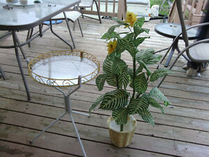 Glass top plant stand