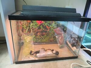 "20 gal. tall (24""x16""x12"") tank, complete. Kitchener / Waterloo Kitchener Area image 1"