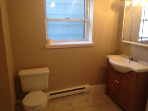 Bright and Nice 1 Bdr Apartment - All utilities included