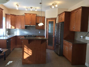 Cabinets, Appliances, & Doors for Sale.