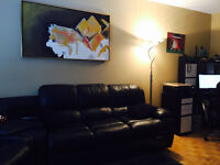Downtown appartment for short or long term rentals
