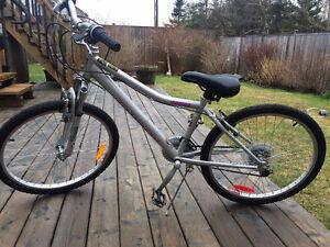 """Ladies Infinity 24"""" bike"""