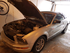 2005 Ford Mustang Convertible   JUST SAFETIED